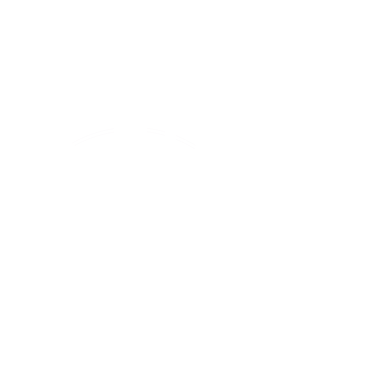 logo iepp social